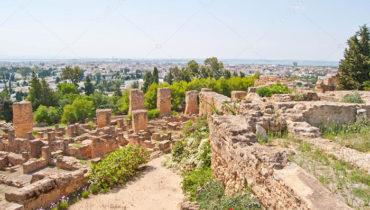 ruines-de-carthage