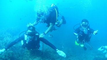 Port El Kantaoui diving